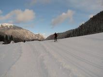 Funcionamento de esqui através dos campos Foto de Stock