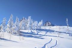 Funcionamento de esqui japonês Fotografia de Stock Royalty Free
