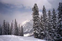 Funcionamento de esqui na montanha de cobre, imagens de stock
