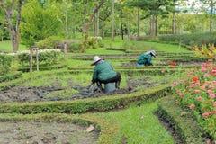 Funcionamento do jardineiro foto de stock