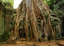 Funcionamentos do templo cambojano antigo fotografia de stock