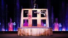 Funcionamiento acrobático en circo almacen de video