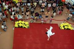 Funcionamiento chino de la etapa del arte marcial Foto de archivo libre de regalías