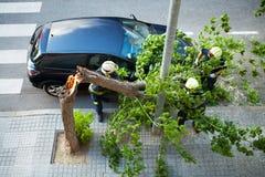 Funcionamiento de dos bomberos. Árbol quebrado después de una tormenta del viento. Fotografía de archivo libre de regalías