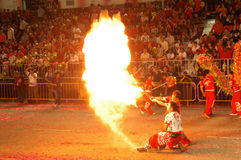 Funcionamiento de fuego por la compañía de Lion Dance Imagen de archivo
