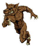 Funcionamiento de la mascota del hombre lobo o del lobo Foto de archivo