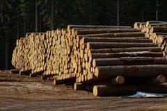 Funcionamiento de madera Fotografía de archivo libre de regalías