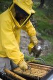 Funcionamiento del apicultor Imagenes de archivo