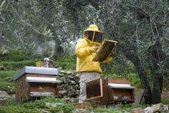 Funcionamiento del apicultor Fotos de archivo