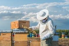 Funcionamiento del apicultor Foto de archivo libre de regalías