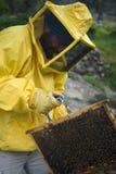 Funcionamiento del apicultor Foto de archivo