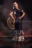 Funcionamiento del flamenco Fotos de archivo