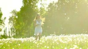 Funcionamiento hermoso de la muchacha, divirtiéndose en campo del diente de león en día de verano en puesta del sol del sol Felic almacen de video