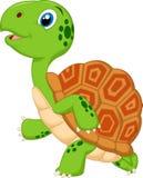 Funcionamiento lindo de la historieta de la tortuga Fotos de archivo libres de regalías