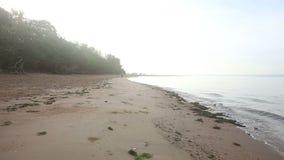 Funcionamientos de la chica joven a lo largo de la playa en la salida del sol almacen de metraje de vídeo