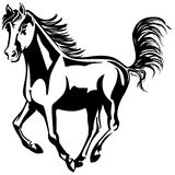 Funcionamientos del caballo Fotografía de archivo libre de regalías
