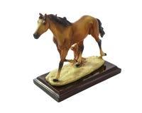 Funcionamientos del caballo imágenes de archivo libres de regalías