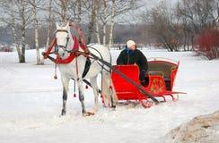 Funcionamientos del caballo blanco en la tierra de la nieve Fotos de archivo libres de regalías