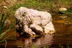 Funcionamientos del río de la roca con él imagen de archivo libre de regalías