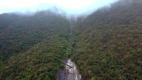 Funcionamientos maravillosos del río de la montaña de la visión aérea entre selva