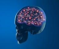 Funciones de la sinapsis de las neuronas del cerebro Imagen de archivo libre de regalías