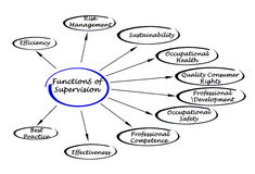 Functions of supervision. Diagram of Functions of supervision Royalty Free Stock Image