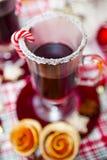 Funderat vin med kryddor och pepparkakakakor Royaltyfria Bilder