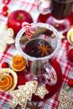 Funderat vin med kryddor och pepparkakakakor Arkivfoto