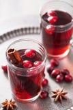 Funderat vin med tranbäret och kryddor Royaltyfri Bild