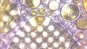 Fundindo as gotas do óleo na água surgem contra luzes múltiplas do ponto Funda e una conceitos Tiro do movimento lento filme
