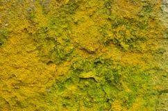 Fundo áspero amarelo Imagem de Stock