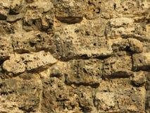 Fundo áspero da parede da pedra calcária Fotos de Stock