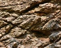 Fundo áspero da textura da rocha Fotos de Stock Royalty Free