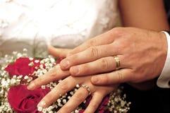 Fundo 8247 do casamento Fotografia de Stock Royalty Free