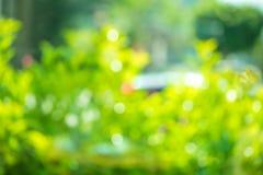 Fundo abstrato bonito do bokeh do verde da mola natural, borrão e fotos de stock royalty free