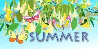 Fundo abstrato brilhante do vetor das flores tropicais, folhas, borboletas, inscrição do verão Imagens de Stock Royalty Free