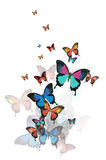 Fundo abstrato colorido com borboletas. Fotos de Stock