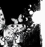 Fundo abstrato com borboletas e borrões da tinta ilustração do vetor