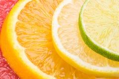 Fundo abstrato com círculos dos citrinos, close-up imagens de stock