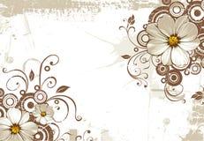 Fundo abstrato com flores ilustração do vetor