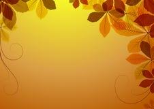 Fundo abstrato com folhas da castanha ilustração royalty free