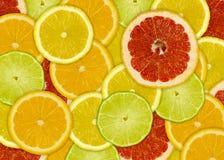 Fundo abstrato com fatias das citrinas Fotografia de Stock
