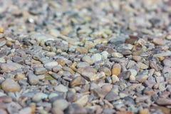 Fundo abstrato com o mar grande e pequeno redondo cinzento seco reeble Fotografia de Stock