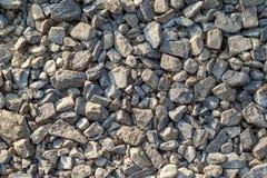 Fundo abstrato com o mar grande e pequeno redondo cinzento seco reeble Imagem de Stock