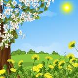 Fundo abstrato com uma árvore de florescência Fotos de Stock Royalty Free