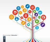 Fundo abstrato da educação com linhas e círculos Brain Concept ilustração stock