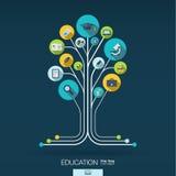 Fundo abstrato da educação Conceito da árvore do crescimento ilustração do vetor