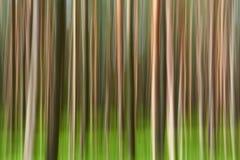Fundo abstrato da floresta do movimento imagem de stock