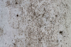 Fundo abstrato da luz do grunge Muro de cimento Foto de Stock Royalty Free
