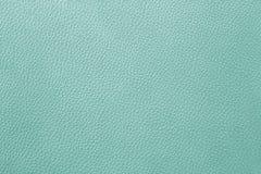 Fundo abstrato da textura com cor verde Fotos de Stock